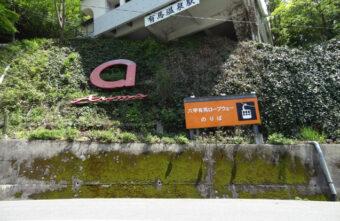 裏六甲山の紅葉散策🍃 ~有馬温泉駅からのロープウエイ旅~