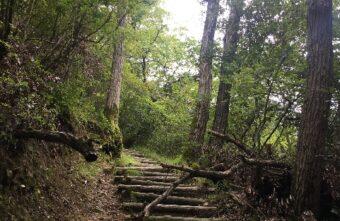 盆休み中の雨空の合間に摂津峡ハイキング